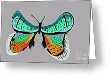 Butterfly Commission Greeting Card
