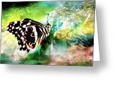 Butterfly Daydream Greeting Card