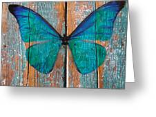 Butterfly Exhibition 1 Greeting Card