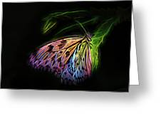 Butterfly Fantasy 1a Greeting Card