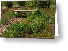 Butterfly Garden Greeting Card