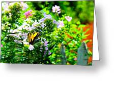 Butterfly In A Garden Greeting Card
