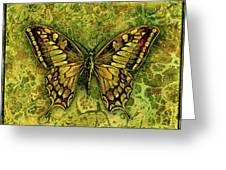 Butterfly In Greens-amber Collection  Greeting Card