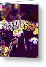 Butterfly Insect Black White  Greeting Card