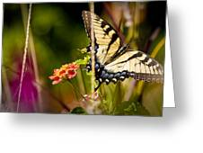 Butterfly Jungle Greeting Card