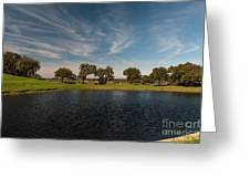 Butterfly Lake At Middleton Place Greeting Card