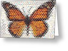 Butterfly Mosaic Greeting Card