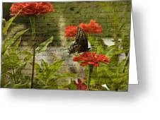 Butterfly Notes Greeting Card