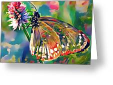 Butterfly Of Paradise 1 Greeting Card