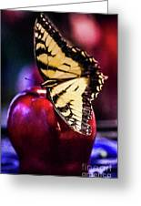 Butterfly On Apple Greeting Card