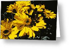 Butterfly On Balsamroot Greeting Card