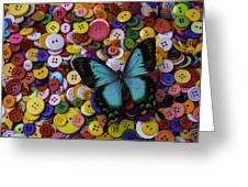 Butterfly On Buttons Greeting Card