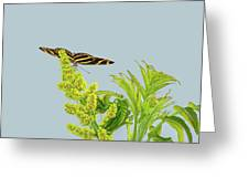 Butterfly On Flower Cluster Greeting Card