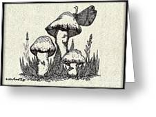 Butterfly On Mushrooms Greeting Card