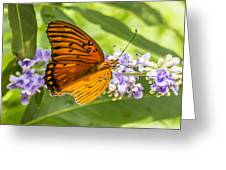 Butterfly On Purple Greeting Card