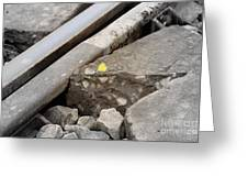 Butterfly On Railroad Tracks Greeting Card