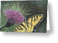 Butterfly On Thistle 2010 Greeting Card