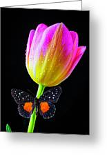 Butterfly On Yellow Pink Tulip Greeting Card