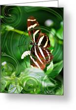 Butterfly Overlay Greeting Card