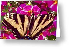 Swallowtail Butterfly Pink Greeting Card