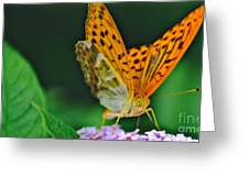 Butterfly Pose Greeting Card