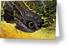 Butterfly Reflections Greeting Card