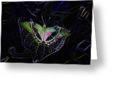 Butterfly Rws Work Number Two Greeting Card
