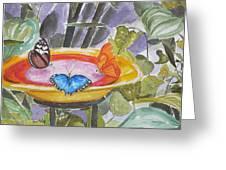 Butterfly Sanctuary At Niagara Falls Greeting Card