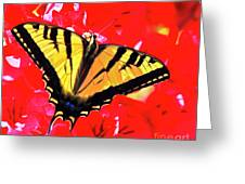Butterfly Series #11 Greeting Card