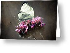 Butterfly Spirit #02 Greeting Card
