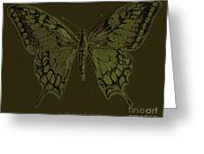 Butterfly Swallow Tail Greeting Card