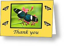 Butterfly Thank You Card Greeting Card