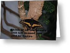 Butterfly Thing Of Beauty Greeting Card