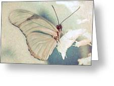 Butterfly Van Gogh Greeting Card