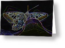 Butterfly Work Rws Number 6 Greeting Card