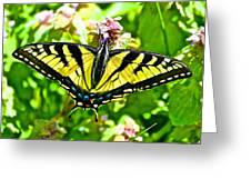 Butterfly Yellow Greeting Card