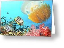 Butterflyfishes And Jellyfish Greeting Card by MotHaiBaPhoto Prints