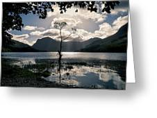 Buttermere Tree Greeting Card