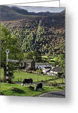 Buttermere Village Greeting Card