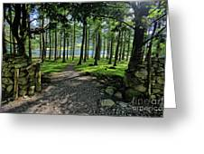 Buttermere Woods Greeting Card