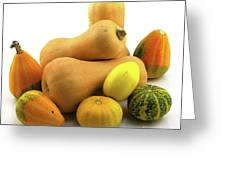 Butternut Squash With Gourds  Greeting Card