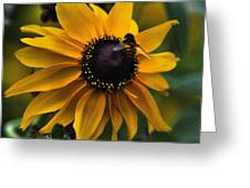 Buzzed Greeting Card