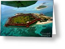 Buzzing The Dry Tortugas Greeting Card