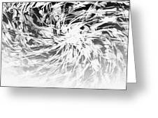 Bw Abstract Spiral Greeting Card