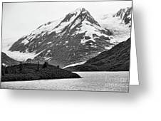 Bw Glacier Alaska  Greeting Card