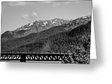 Bw Rail Alaska  Greeting Card