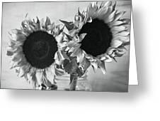 Bw Sunflowers #002 Greeting Card
