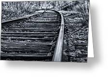 Bw Tracks Greeting Card