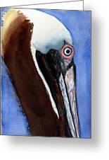 Bwon Pelican Eye Greeting Card