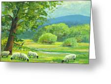 By Peaceful Waters Greeting Card